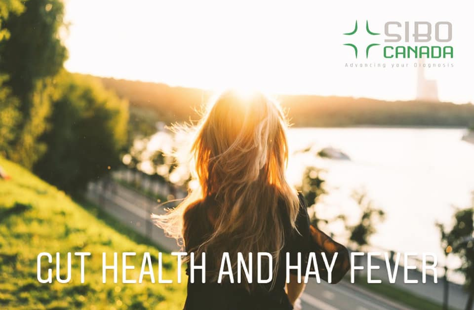 Gut Health and Hay Fever